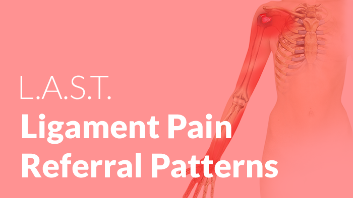 new ligament pain referral pattern posters lastechnique